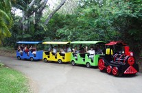 Custom composite train for an amusement park